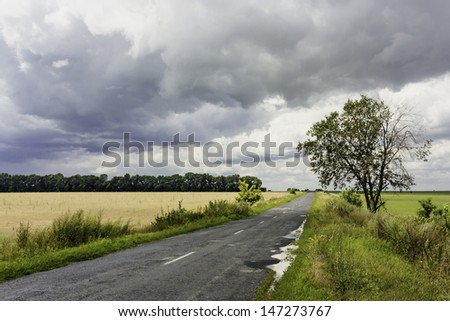 Landscape with a country road after rain - stock photo