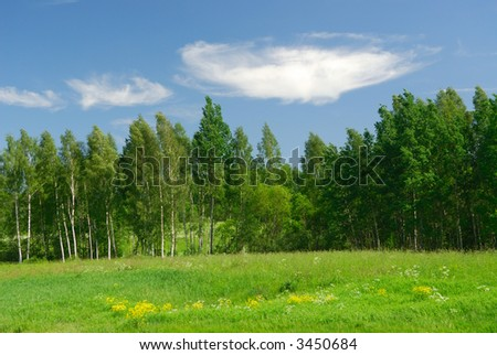 Landscape with a white cloud - stock photo