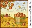 Landscape with apple harvest - stock photo