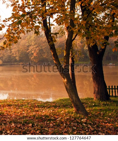 Landscape with autumn forest and lake - stock photo