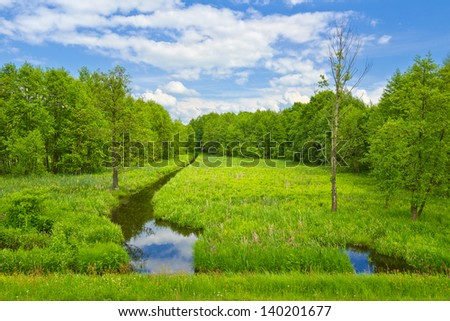 Landscape with brook and meadow and forest. - stock photo