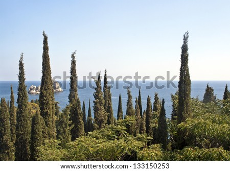 Landscape with cypress grove in the foreground - stock photo