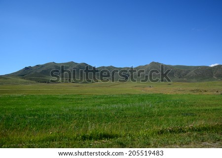 Landscape with field and mountains - stock photo