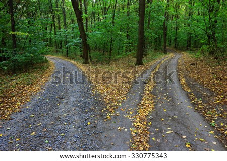 Landscape with fork rural roads in forest - stock photo