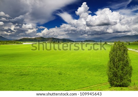 Landscape with green field and cloudy sky - stock photo