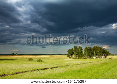 Landscape with green field and storm clouds - stock photo