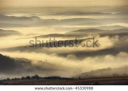 landscape with hills, fog and a bird - stock photo