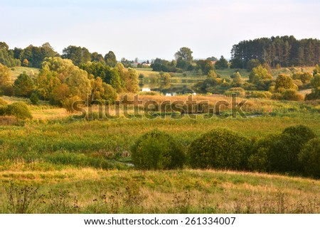 Landscape with meadows and marsh - stock photo