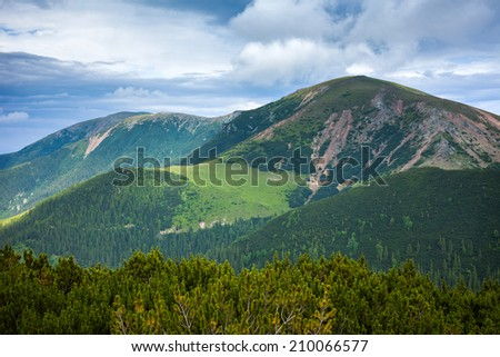 Landscape with mountains and pines under a cloudy sky in the summer - stock photo