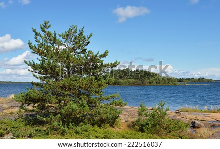 Landscape with pine trees on rocks. Aland Islands, Finland - stock photo