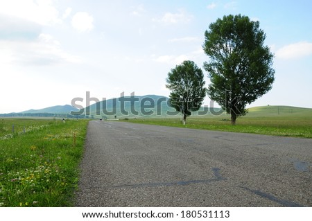 Landscape with road and green trees - stock photo