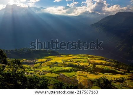 Landscape with terraced rice fields and rays in Sapa, Lao Cai, Vietnam  - stock photo
