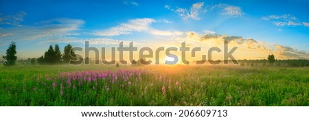 landscape with the sunrise, a blossoming meadow and fog,panorama - stock photo