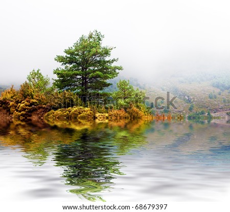 landscape,with tree and lake - stock photo