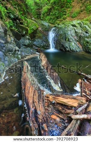 Landscape with Valea lui Stan Gorge in Romania - stock photo