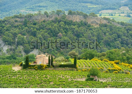 Landscape with vineyards in France - stock photo