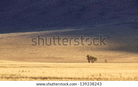 Landscapes of Namibia. High red dunes, granite rocks, desert open spaces, boundless savannas. Beauty and rich nature of the African continent. - stock photo