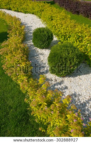 landscaping in the garden, shrub and stone  - stock photo