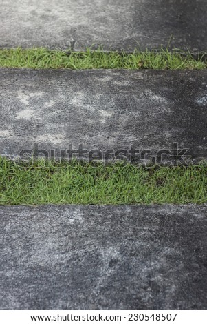 Landscaping in the garden. The path in the garden. - stock photo
