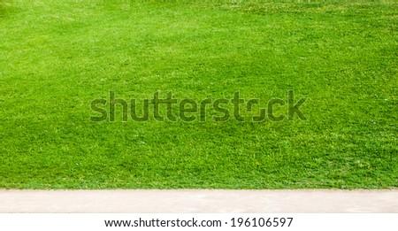 lane in green grass - stock photo