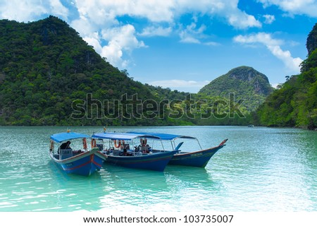 LANGKAWI- FEB 25: Tourist boats at pregnant maiden island on February 25, 2012 in Langkawi, Malaysia. The pregnant maiden island is known to be the second largest island of the Langkawi archipelago - stock photo