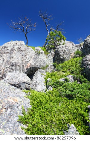 Large boulders dominate the landscape of the Black Hills National Forest in South Dakota - stock photo