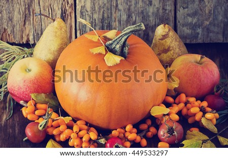 Large delicious pumpkin and different fresh fruit on wooden background. Bio healthy food. Organic vegetables.  Rustic style. Selective focus. Toned image - stock photo