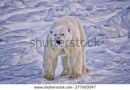 Large male polar bear on Arctic tundra,digital oil painting - stock photo