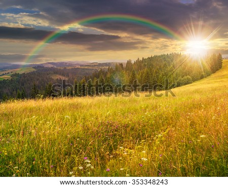 large meadow with mountain herbs and a conifer forest in front of mountainous massif away in the background under the rainbow in evening light - stock photo