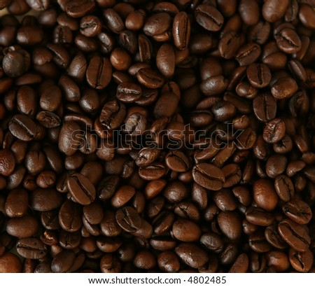 large number of fresh coffee beans - stock photo