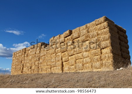 Large pile of hay bales - stock photo