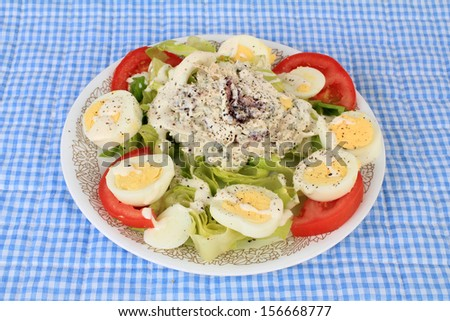 Large scoop of cranberry and turkey salad on bed of Romaine Lettuce generously garnished with hard boiled egg and sliced tomato.  Lightly drizzled with Ranch Dressing. - stock photo