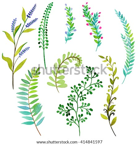 large set of isolated leaves and sprigs. beautiful botanical elements, herbs and weeds, cut out and isolated on white. Romantic and gentle nature motivs. leaves, branches. - stock photo