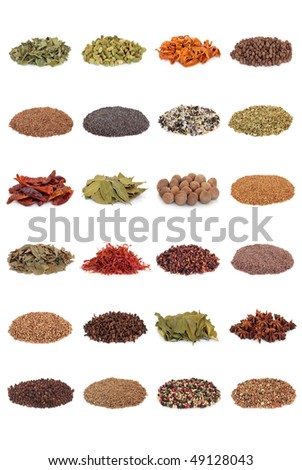 Large spice and herb leaf selection isolated over white background. - stock photo