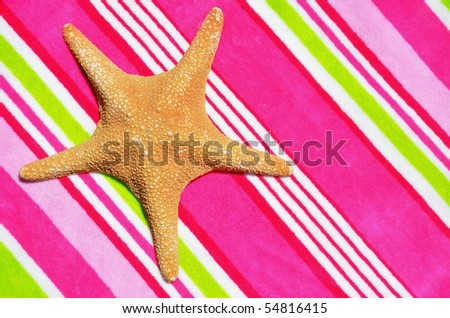 Large starfish on pretty pink beach towel, room for your text - stock photo