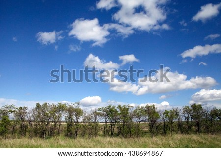 Large steppes with small trees under a blue and cloudy sky Khakassia - stock photo