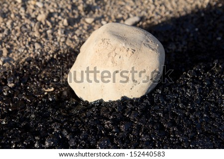 large stone in the fresh asphalt - stock photo