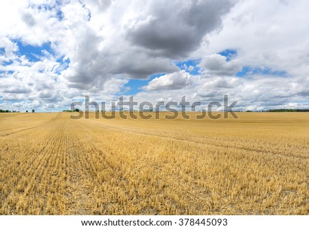 Large stubble field, which extends to the trees on the horizon, with impressive, low hanging clouds in the sky.   - stock photo