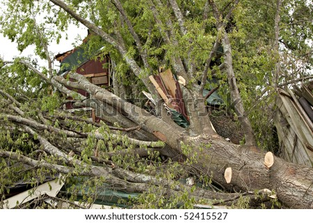 Large tree on house after tornado.  Some limbs have been trimmed to allow the owner to enter the property. - stock photo