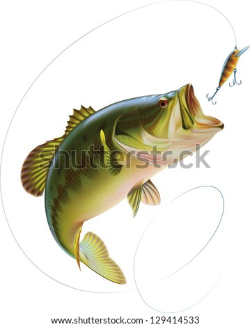 Largemouth bass is catching a bite and jumping in water spray. Raster image. Find an editable version in my portfolio. - stock photo
