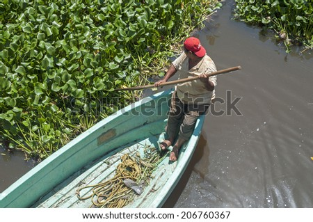 LAS CHOAPAS, MEXICO - JULY 17, 2014: A man uses his oar to navigate a small boat through a muddy swamp covered in lush green water hyacinths in Las Choapas, Veracruz, Mexico.  - stock photo
