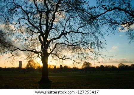 Late afternoon at the Hyde Park, London, England - stock photo
