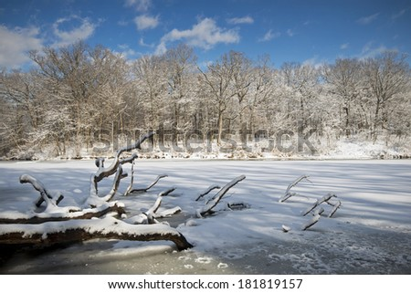 Late afternoon shadows play across the frozen surface of Sterling Pond at The Morton Arboretum in Lisle, Illinois. - stock photo