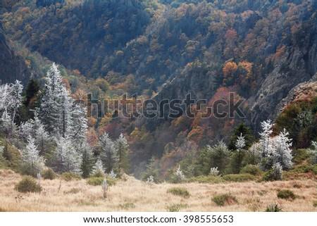 Late autumn in Cozia National Park, Romania, Europe - stock photo