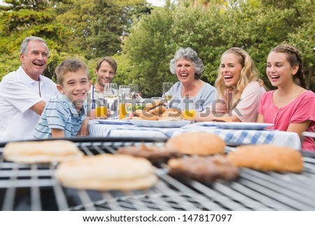 Laughing family having a barbecue in the park together looking at camera - stock photo