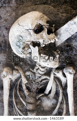 Laughing Skeleton - stock photo