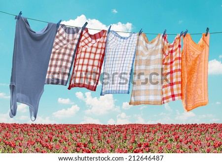 Laundry hanging over flower field - stock photo