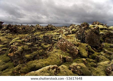 Lava rocks popping out of the moss on Iceland - stock photo