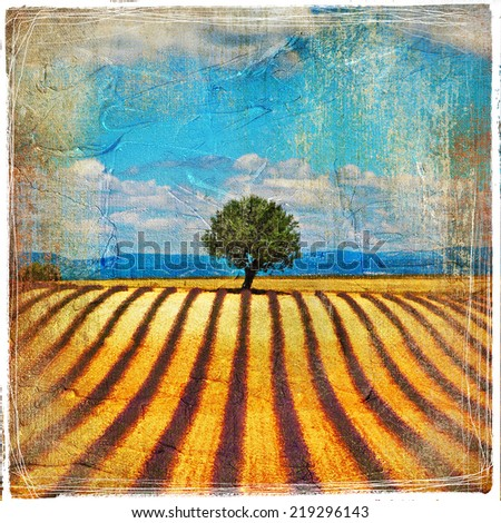 lavander feelds and tree - picture in retro style - stock photo