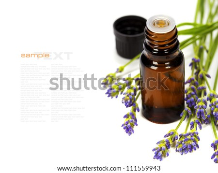 lavender aromatherapy (fresh lavender flowers,  essential oil) over white  (with easy removable text) - stock photo